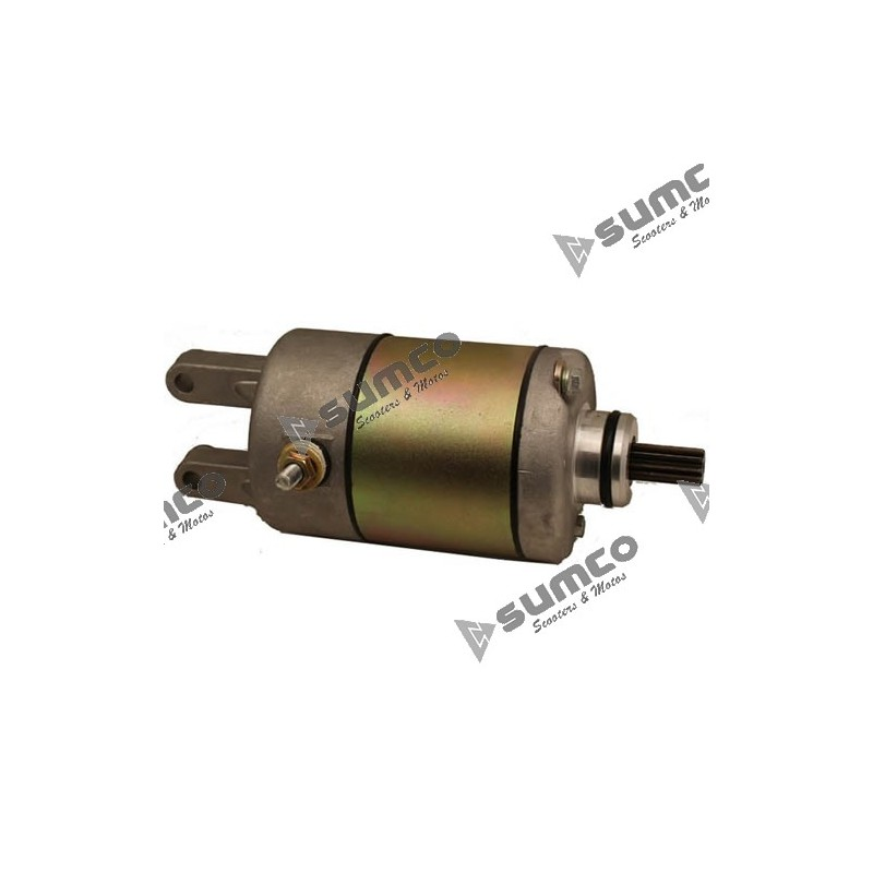 Electric Starter Motor Assy 9 Teeth Jianshe 250atv  Js400 Loncin 250atv  Js171ffm